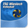 TSG – Volleyball Logo
