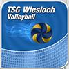 TSG – Volleyball Logo