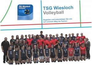 TSG Wiesloch - Volleyball Sponsoring